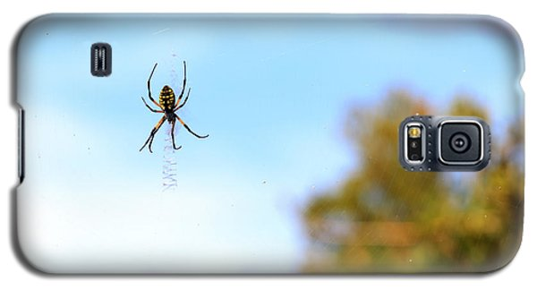 Suspended Spider Galaxy S5 Case