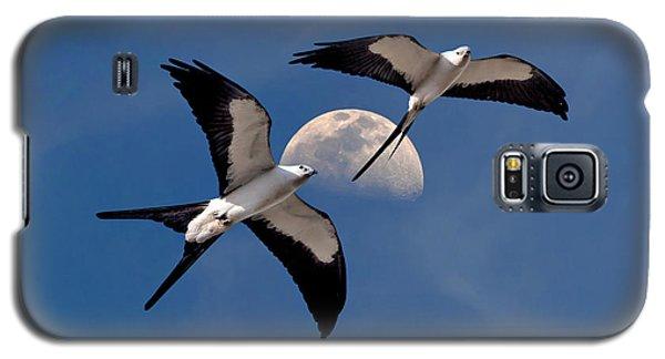 Swallow Tail Kites In Flight Under Moon Galaxy S5 Case by Justin Kelefas