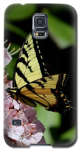 Swallow Tail On Mountain Laurel Galaxy S5 Case