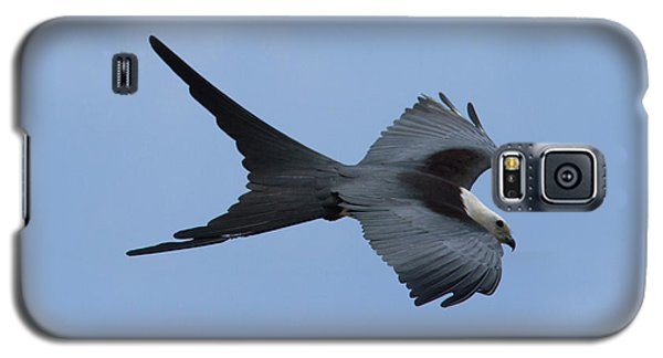 Swallow-tailed Kite #1 Galaxy S5 Case