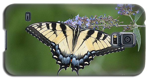 Galaxy S5 Case featuring the photograph Swallowtail 20120723_24a by Tina Hopkins