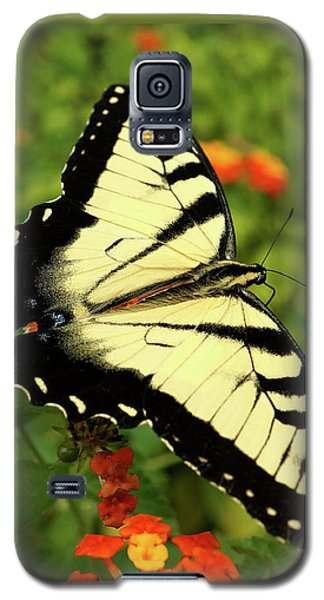 Swallowtail Among Lantana Galaxy S5 Case by Sue Melvin