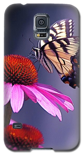Galaxy S5 Case featuring the photograph Swallowtail And Coneflower by Byron Varvarigos