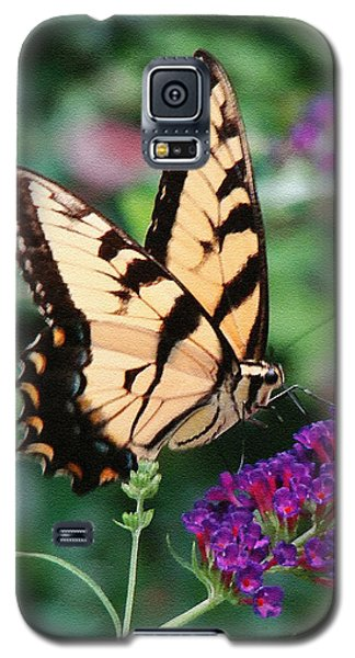 Swallowtail Butterfly 1 Galaxy S5 Case by Sue Melvin