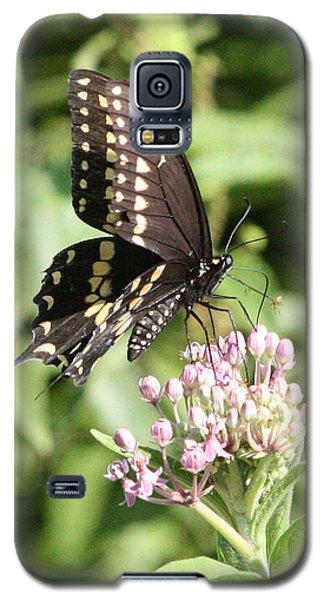 Swallowtail Butterfly 3 Galaxy S5 Case