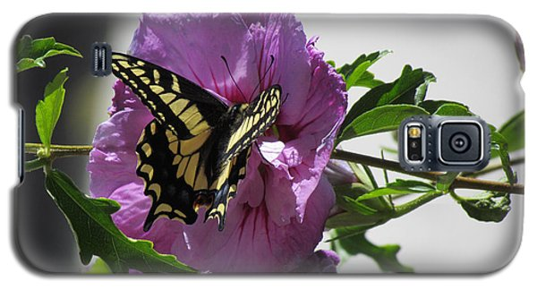 Galaxy S5 Case featuring the photograph Swallowtail Butterfly by Bonnie Muir