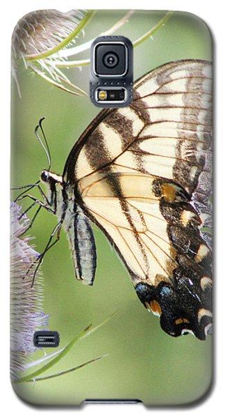 Swallowtail Delight Galaxy S5 Case by Anita Oakley