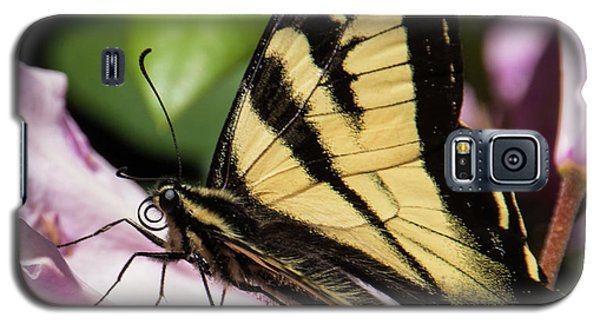 Swallowtail Butterfly Galaxy S5 Case