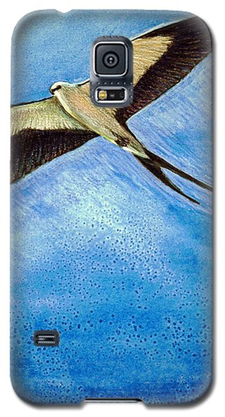 Swallowtail Sighting Galaxy S5 Case