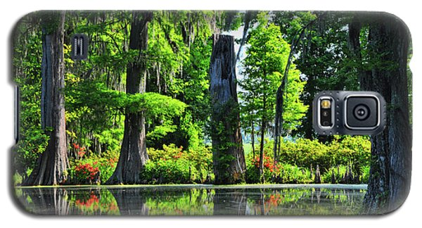Swamp In Bloom Signed Galaxy S5 Case