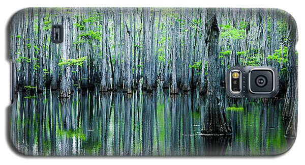 Swamp In Louisiana Galaxy S5 Case by Ester  Rogers