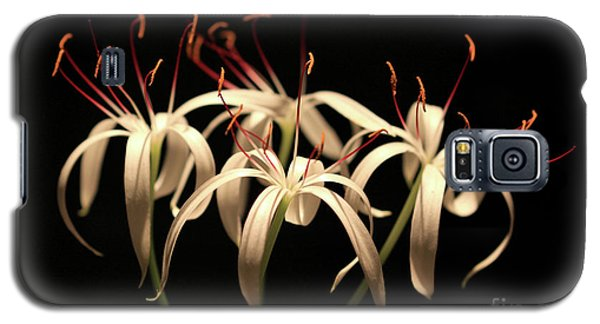 Swamp Lily Galaxy S5 Case