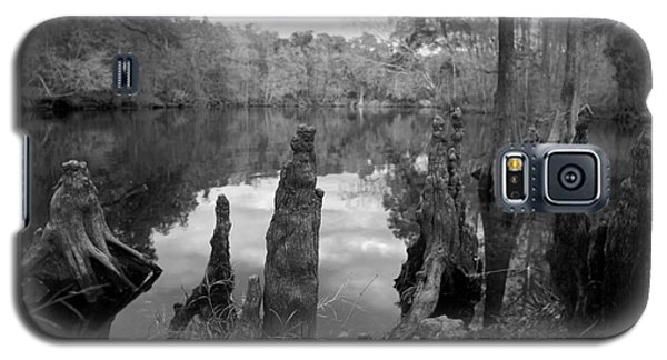 Swamp Stump II Galaxy S5 Case by Blake Yeager
