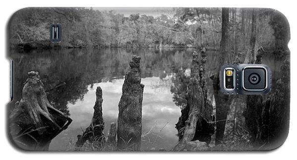 Swamp Stump II Galaxy S5 Case