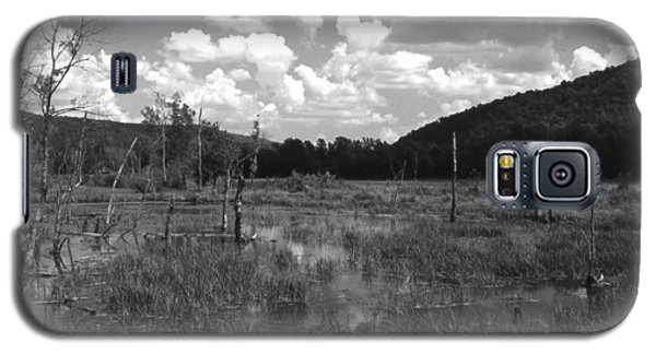 Swampoem Galaxy S5 Case by Curtis J Neeley Jr