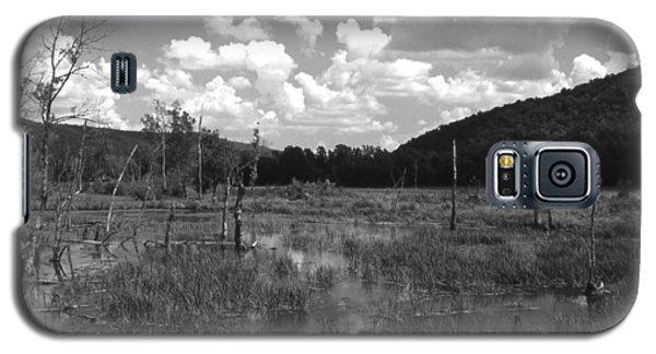 Swampoem Galaxy S5 Case
