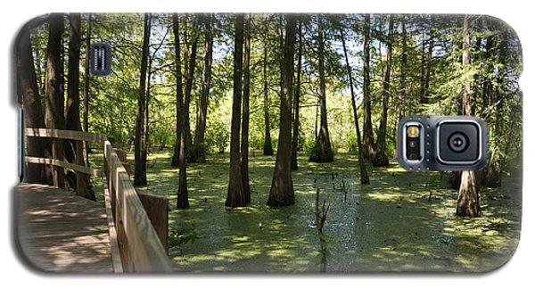 Swamps Galaxy S5 Case