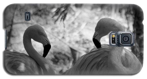 Swan Dance Galaxy S5 Case