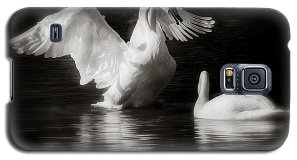 Swan Display Galaxy S5 Case