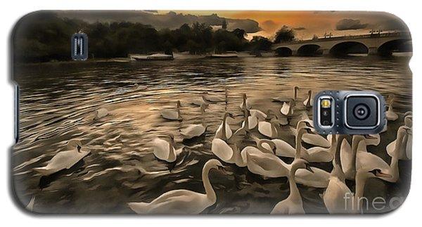 Swan Gloaming Kingston U K Galaxy S5 Case by Jack Torcello