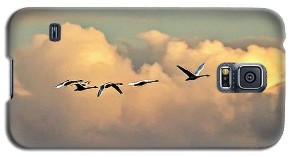 Swan Heaven Galaxy S5 Case