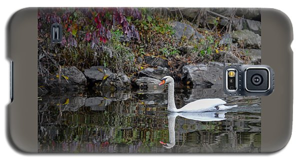 Swan In Autumn Reflections Galaxy S5 Case