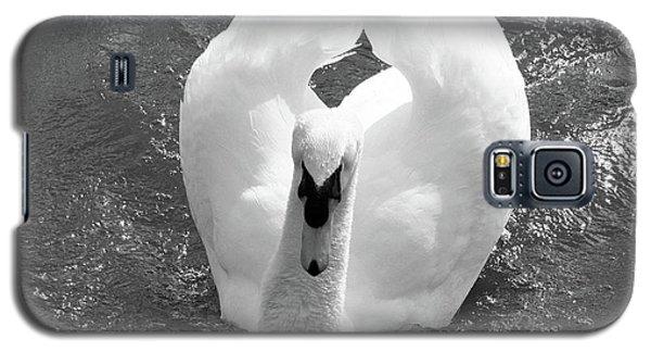Swan In Motion Galaxy S5 Case