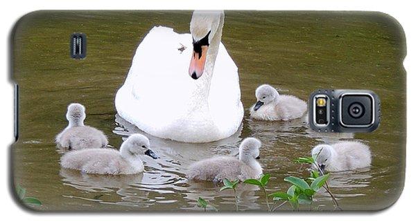 Swan Lake 1 Galaxy S5 Case by Bill Holkham