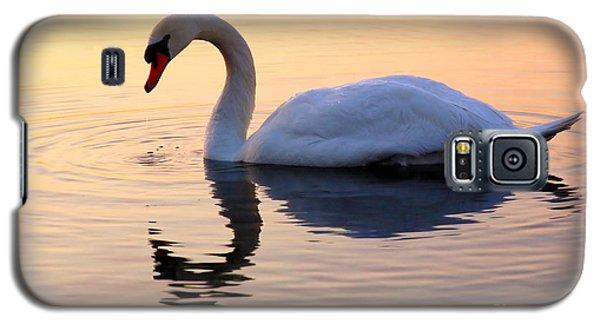Swan Lake Galaxy S5 Case by Joe  Ng