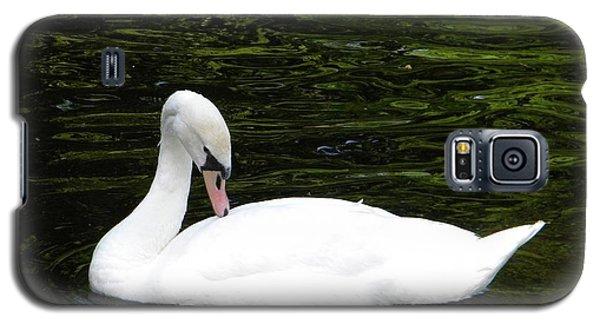 Swan May Galaxy S5 Case by Manuela Constantin
