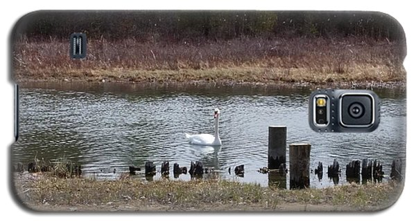 Galaxy S5 Case featuring the photograph Swan Of Crooked River by Wendy Shoults