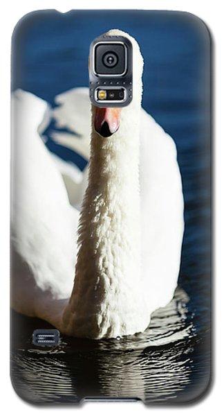Swan Posing Galaxy S5 Case