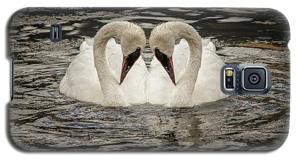 Galaxy S5 Case featuring the photograph Swan Times Two by Mary Hone