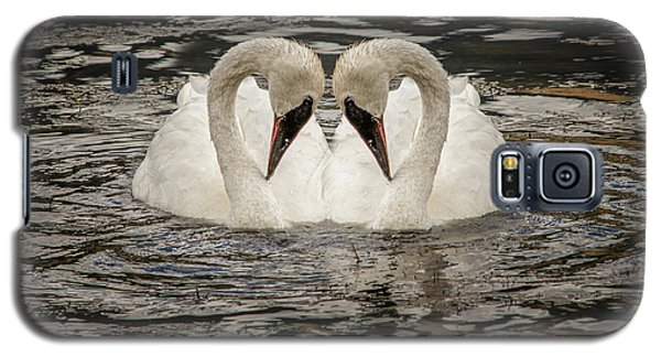 Swan Times Two Galaxy S5 Case by Mary Hone
