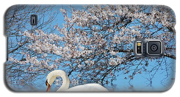 Galaxy S5 Case featuring the photograph Swan Under The Spring Trees  by Elaine Manley