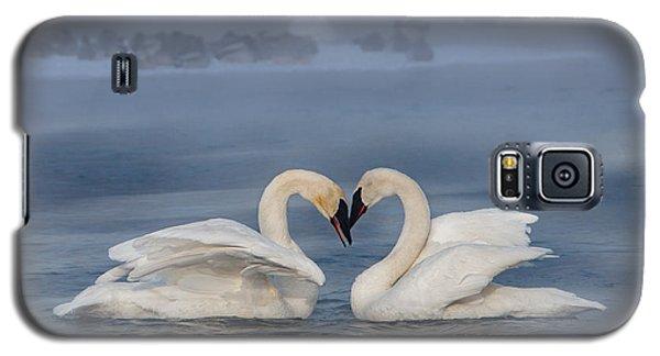 Swan Valentine - Blue Galaxy S5 Case