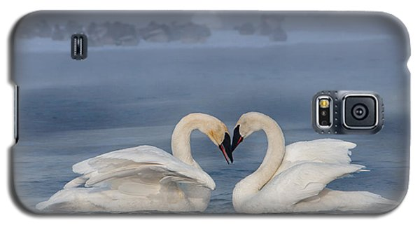 Swan Valentine - Blue Galaxy S5 Case