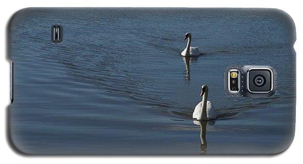 Swans On Deep Blue Galaxy S5 Case