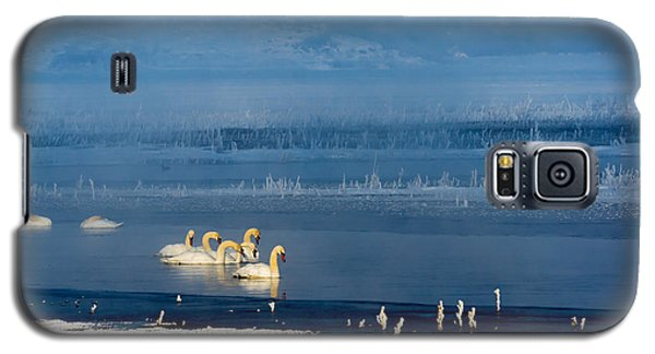 Swans On The Lake Galaxy S5 Case