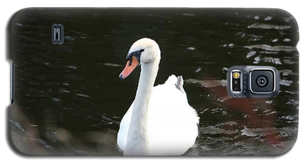 Swans-a-swimming Galaxy S5 Case