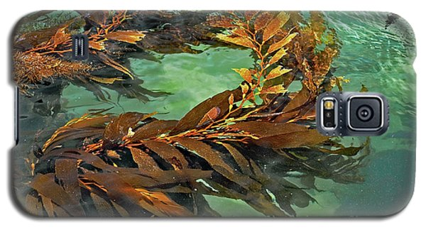 Swaying Seaweed Galaxy S5 Case