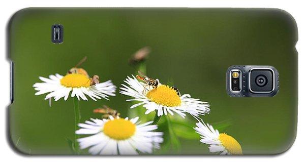 Sweat Bee Galaxy S5 Case
