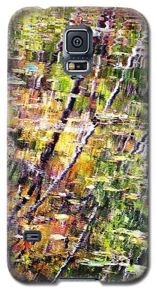 Raking Water  Galaxy S5 Case by Melissa Stoudt