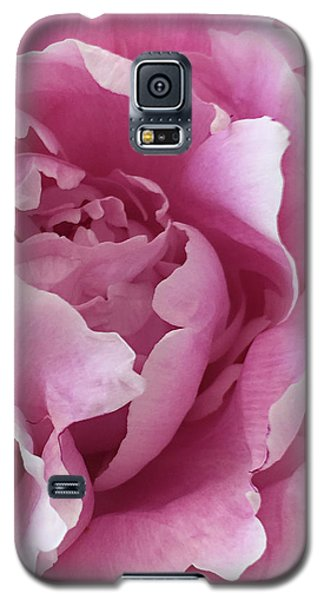 Galaxy S5 Case featuring the photograph Sweet As Cotton Candy by Sherry Hallemeier