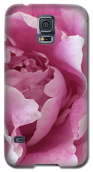 Sweet As Cotton Candy Galaxy S5 Case
