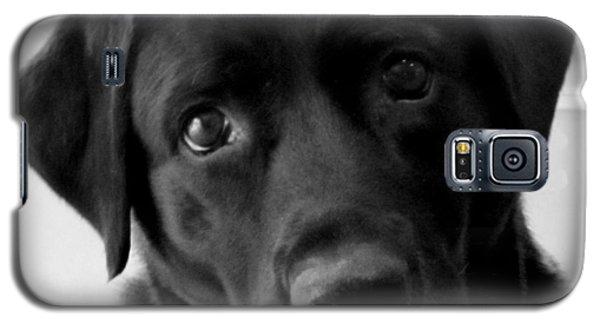 Sweet In Black Galaxy S5 Case
