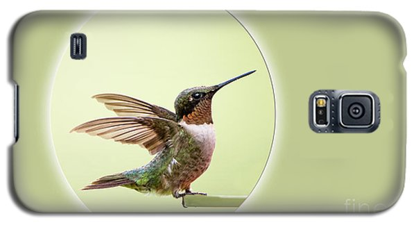 Galaxy S5 Case featuring the photograph Sweet Little Hummingbird by Bonnie Barry