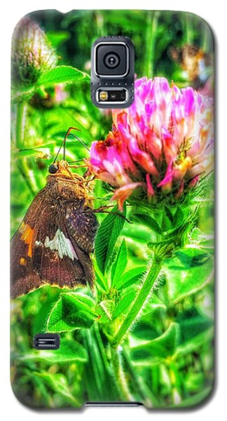 Galaxy S5 Case featuring the photograph Sweet Nectar  by Jame Hayes