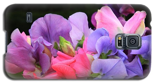 Sweet Pea Floral Galaxy S5 Case by Marjorie Imbeau
