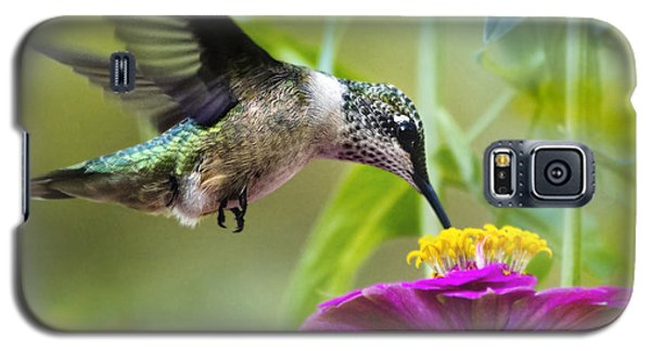 Sweet Success Hummingbird Square Galaxy S5 Case